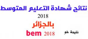 نتائج البيام 2019 نتائج شهاد التعليم المتوسط 2019 الجزائر