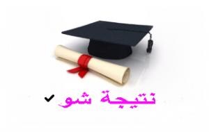 نتائج الصف السادس ابتدائي في العراق 2020