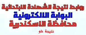 نتيجة الشهادة الابتدائية بالاسكندرية 2020